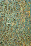 Decay metal rust surface, green rusty background.  Royalty Free Stock Images
