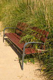 Decay. Sympolized with an overgrown park bench Stock Photos