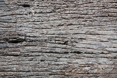 Decay wood Royalty Free Stock Photos