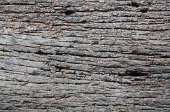 Decay wood Stock Photography