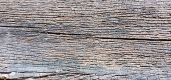 Decay wood texture background. Old wood Stock Image