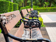 Decayed bench in garden Royalty Free Stock Image