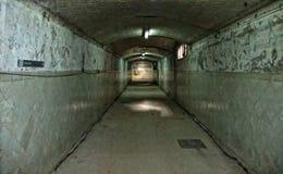 Decayed Hallway Stock Image
