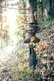 Decayed hydrant in the forest Royalty Free Stock Photography