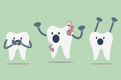 Decayed tooth Stock Photography