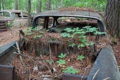Decaying car body Royalty Free Stock Photos