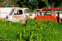 Decaying cars Stock Images