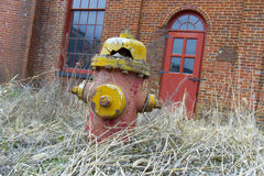 Decaying fire hydrant in weeds Royalty Free Stock Photo