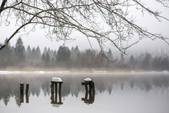 Decaying piers covered with snow in lake Stock Photos