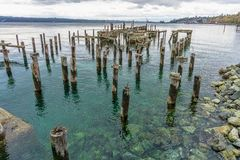 Decaying Pilings Landscape. A view of decaying pilings near shore in Ruston, Washington royalty free stock photography