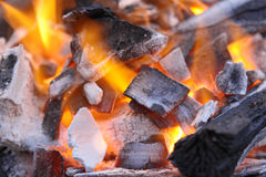 Decaying red coals of a tree in a fire Stock Image