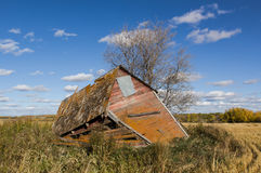 Decaying shed Royalty Free Stock Image