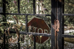 Decaying stop sign behind rusty metal gate Royalty Free Stock Photo