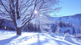 December 2009 Arkivfoto