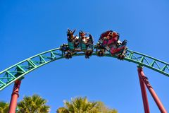 Friends enjoy snaking ride on Cobra`s Curse rollercoaster at Bush Gardens Tampa Bay Theme Park. December 26, 2018 Friends enjoy snaking ride on Cobra`s Curse stock photography