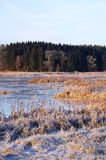 December lake. A newly frozen lake during winter months stock photography