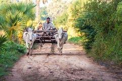 2 december: Landbouwer die op het gebied werken Royalty-vrije Stock Fotografie