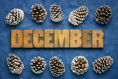 Free December Month Word In Wood Type Royalty Free Stock Image - 163489926