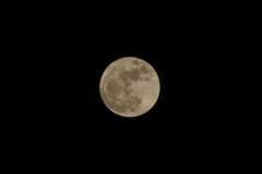 December Supermoon. Last supermoon of 2016 taken in Tennessee Royalty Free Stock Photography