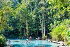 """22 December 2018-Thailand:: vatten för smaragd för  för € för """"PA Ton Namâ i djungeln royaltyfria bilder"""