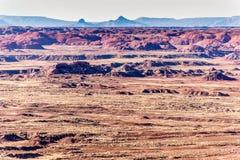 21 december, 2014 - Van angst verstijfd Bos, AZ, de V.S. Stock Foto