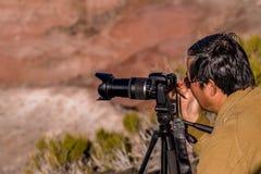 21 december, 2014 - Van angst verstijfd Bos, AZ, de V.S. Royalty-vrije Stock Foto's