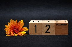 12 December on wooden blocks with an orange daisy. On a black background stock image