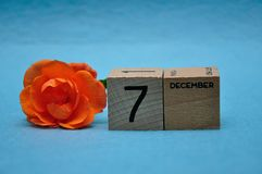 7 December on wooden blocks with an orange rose. On a blue background royalty free stock image
