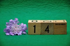 14 December on wooden blocks with a purple flower. On a green background royalty free stock photography