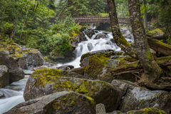 Deception Falls, Skykomish, Washington. Deception Creek crashes down a few steps, then glides over smooth rock under the highway and ends in a square, misty royalty free stock photo