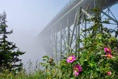 Deception Pass Bridge in fog. Arch bridge in  Deception Pass State Park. Puget Sound. Juan de Fuca Strait. Whidbey Island. Seattle. Washington. United States Royalty Free Stock Photos