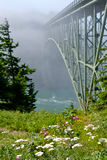 Deception Pass Bridge in fog and wildflowers. Arch bridge in Deception Pass State Park. Puget Sound. Juan de Fuca Strait. Whidbey Island. Seattle. Washington royalty free stock image