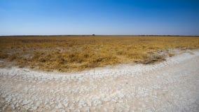 Deception. Valley, Central Kalahari Game Reserve, Botswana Stock Image
