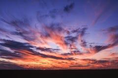 Deception Valley. Central Kalahari Game Reserve, Ghanzi, Botswana, Africa stock photo