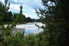 Dechutes flod Royaltyfri Bild