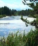 Dechutes flod Royaltyfri Foto