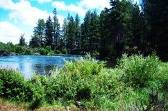 Dechutes rzeka Obrazy Stock