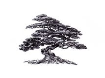 Deciduous bonsai.The natural form, the eastern mystery. Graphic drawing, an illustration of an exotic plant in the style of a bonsai, a black and white symbol Royalty Free Stock Photography