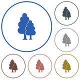 Deciduous forest icon Royalty Free Stock Photo