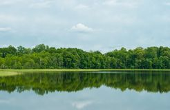 Deciduous forest reflected in lake. Deciduous forest is reflected in a water smooth surface of the lake. Latgale (Latvia royalty free stock photos