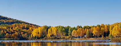 Deciduous forest reflection in an lake. Beautiful autumn colors Royalty Free Stock Photography