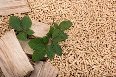 Deciduous oak biomass - wood, pellets and leaves. Deciduous pile of oak biomass - wood, pellets and leaves royalty free stock photo
