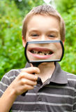 Deciduous teeth Royalty Free Stock Photos