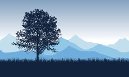Deciduous tree on the grass with blue mountains in the backgroun. D, under the morning sky - vector stock illustration