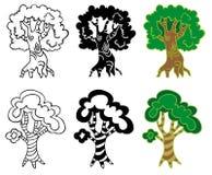 Deciduous trees Stock Photography