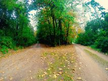 Decision of life. Two ways in forest going in different directions. Its a symbolic pic for a decision in life. Image taken outside on a sunny day in fall. Image Royalty Free Stock Photos