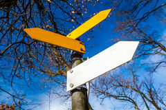 Decision sign in yellow and white. Yellow and white decision signs on a tree Royalty Free Stock Photo