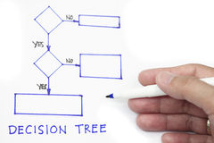 Decision tree Stock Image
