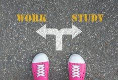Decisione da fare alla strada trasversale - lavoro o da studiare immagine stock