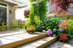 Deck with beautiful flowers in pots Stock Photo
